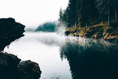 Morning Mood (noson.photo) Tags: morning mood moody fog lake forest wood switzerland caumasee lag la cauma graubnden nikon reflection reflections tokina light