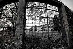 Ex zuccherificio - Cervignano (Alessandra Zamparo) Tags: bw canon edificio bn friuli fabbrica zuccherificio cervignanodelfriuli