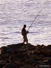 Pêcheur installé au bout de la digue (bleumarie) Tags: mer silhouette sport vacances fuji sable été vague pêcheur roussillon loisirs plage rocher tourisme fujifinepix pêche méditerranée saintemarie catalogne pyrénéesorientales loisir suddelafrance canneàpêche bleumarie mariebousquet photomariebousquet