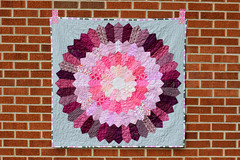 Bloom Quilt (Jeni Baker) Tags: modern quilt handmade sewing quilting finished stitching block projects quilts crafting