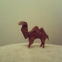 Camel, Fumiaki Kawahata (Mandovolante) Tags: valencia square origami camel kawahata fumiaki iphoneography