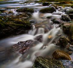 Go with the flow (Z0L1TA) Tags: tree water northernireland flowing comber tollymoreforestpark canon400d  nd10filter zolitamykytyn zolitaphotography httpzolitaphotographywixcomzolita olita