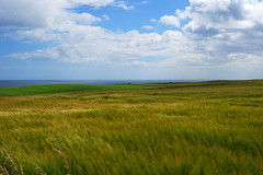 Dunnottar Far Away (Wrinzo) Tags: greatbritain sea sky castle clouds scotland countryside europa europe nuvole mare cielo castello dunnottar stonehaven scozia