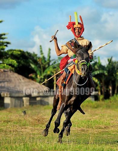 Pasola Warrior
