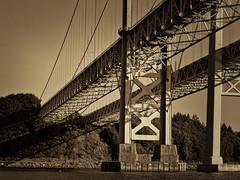 Beneath the Bridge, Tacoma (tacoma290) Tags: bridge water lines nikon angles pacificnorthwest pugetsound piling pnw caisson narrowsbridge nottoobad gallopinggertie wifespointandshoot beneaththebridgetacoma