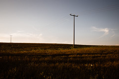 untitled landscape (Andreas Strauch) Tags: landscape evening abend landschaft strommasten masten summarit35mm leicam9