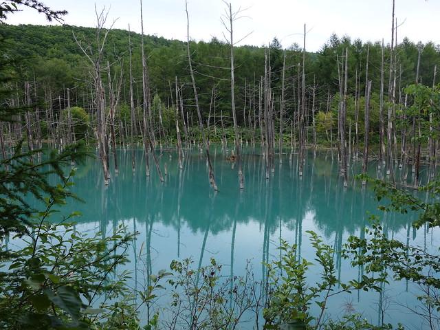 青い池その2