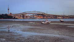 Low Tide (Robert Brienza) Tags: city sunset 50mm cityscape auckland lowtide 2012 aucklandcity lightroom canon50mmf14 primelens aucklandharbourbridge canon7d littleshoalbayreserve