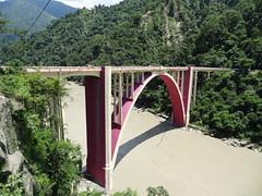 The Tiger bridge (Prasunext) Tags: 2012 westbengal siliguri swapna teesta susmita chalsa malbazar meteli newalipurduar maynaguri alipurduarjunction maynaguricollege newmaynaguri prasunmaynaguri prasunsarkar sevoke2012