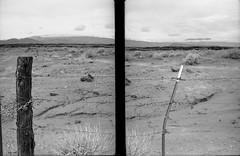 deserts miss the rain (QsySue) Tags: blackandwhite clouds fence landscape utah diptych desert efke50 35mmfilm santaclara olympuspen fencepost developedathome 35mmcamera halfframecamera titleisaneverythingbutthegirllyric