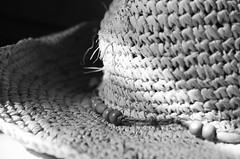 Straw Hat (Dave2142) Tags: light sun sunlight texture hat blackwhite beads focus pattern straw shade string