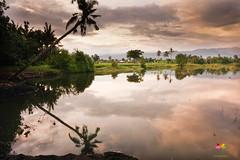 Bungkulan  Beach Bali (suyasa) Tags: bali landscape photography rice fields bungkulan