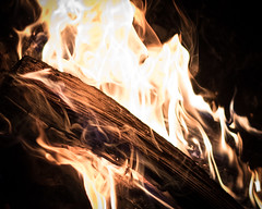 Camp Fire (gh2010ism) Tags: camping fire wood nikon d750 portrait relaxing hot burning recent