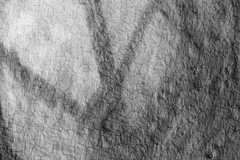 shadow texture 243/365 (#christopher#) Tags: abstract texture shadow