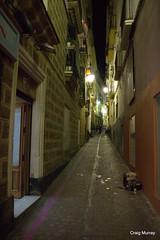 Cadiz (24) (crgmry) Tags: cadiz andalucia narrowstreet historiccity historic picturesque night