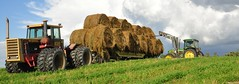 Published in the Western Producer - August 25, 2016 (Jeannette Greaves) Tags: 2016 jspubpic westernproducer hugh jeannette moving hay bales deerwood altamont adfarm