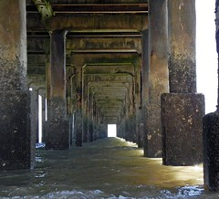 Under-the-pier (Kathy Waugh) Tags: coloum water pier