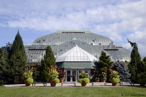 Thumbnail from Lincoln Park Conservatory
