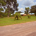 TAICO Eco Environment
