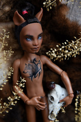 Clawd Wolf (Danya St.) Tags: repaint mh monsterhigh monster doll ooakdoll ooak custom clawd clawdwolf wolf