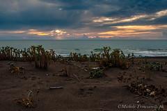 _DSC0968 (. ..::..::::....:::::m.trinciarelli photo::..:..) Tags: mare tramonto cielo spiaggia maredinverno pace