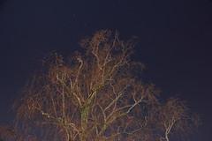 Full moon shooting (ElBroka bicicletea por Auckland) Tags: longexposure newzealand moon night start noche july luna auckland julio nz estrellas 2012 tamron18270mmf3563 canoneoskissx4 tagsadded