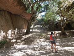 Pinnacles (64) (returnoftheyeti) Tags: camping nationalpark hiking pinnacles pinnaclesnationalmonument balconiescave dayhikes beargulch
