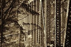 Deception Pass Bridge 2 (tacoma290) Tags: sepia nikon rivets steel whidbeyisland plates deceptionpass span deceptionpassbridge fidalgoisland deceptionpassbridge2 steelstrussstructure