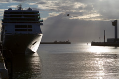 IMG_0318.jpg (Zenith_01) Tags: france port boat harbour normandie bateau normandy contrejour lehavre navire
