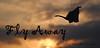 Fly Away (ii)