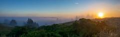 Sunglow Ridge (Darvin Atkeson) Tags: ocean california sunset panorama fog forest landscape nikon glow pacific foggy parks goldengate area bayarea recreation nikkor grassland ridgecrest mttamalpais 2470mm darvin atkeson darv liquidmoonlightcom d800e