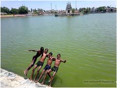 Chill Out Boys! (Mahesh Babu (Great Maba)) Tags: kulam thiruvarur