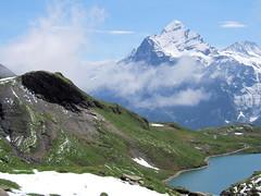 bachalpsee and the wetterhorn (mailatmatt) Tags: alps alpes schweiz switzerland suisse suiza first alpine grindelwald alpen svizzera berneroberland berneseoberland wetterhorn bachalpsee bachsee dscf5910 oberlandbernois brglistock baerglistock