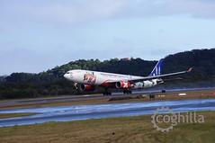 AirAsia X | Airbus A330-343 | 9M-XXF | OOL YBCG (coghilla) Tags: a330300 airasiax airbus airport aviation ool aeroplane airplane aircraft goldcoastairport ybcg airasia x a330 a333 a330343 | 9mxxf