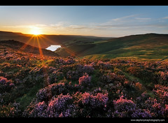And then I thought (Steve-P2010) Tags: sunset sunlight backlight landscape evening nationalpark sundown heather derwent derbyshire peakdistrict wideangle reservoir hills sunburst backlit peaks hillside sunbeam contrejour backlighting sidelighting ladybower derwentedge sidelight derwentreservoir steveprice darkpeaks 5dmk2