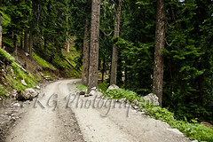 Way to Paradise Warwan (PKG Photography) Tags: road travel moon tourism trekking trek togetherness landscapes honeymoon altitude traditional plan attitude honey transportation kashmir wilderness gettyimages aspirations traditonal gujjar kashmirindia gurjar traveltokashmir kashmirtourism warwan kashmirwallpapers pkgphotography gettyimagesindiaq4 kashmirplace wallpaperskashmir kashmirhoneymoonplan