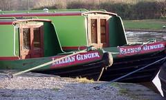 Gingers! Stone, 3 Jan 2009 (DizDiz) Tags: uk england stone fender staffordshire narrowboats canaltown olympusc720uz january2009