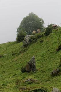 Parc la Mutta in Falera in der Surselva im Kanton Graubünden in der Schweiz