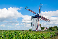 Windmill in the small Dutch village of Meeuwen - De Witte Molen in het Brabantse dorp Meeuwen (RuudMorijn) Tags: old blue summer sky white holland green mill tourism monument nature netherlands ecology windmill dutch grass stone architecture clouds rural landscape outside countryside construction ancient scenery energy europe european technology exterior power outdoor farm traditional rustic working scenic landmark scene historic retro zomer historical tradition agriculture silage wit maize blauwe meeuwen molen architectuur fodder flourmill witte noordbrabant windmolen brabants landelijk agrarisch zomers cornmill wolkenlucht rijksmonument korenmolen akkerbouw abigfave gepleisterd grondzeiler gerestaureerd snijmais draaiende gerestaureerde kleibergsestraat