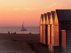 Scheveningen bij avond (Annemieke Proze) Tags: beach nature strand scheveningen nederland noordzee natuur zee annemiekeprozee