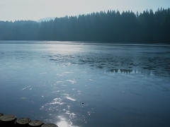 "Lake Padden Ice • <a style=""font-size:0.8em;"" href=""http://www.flickr.com/photos/59137086@N08/7874402472/"" target=""_blank"">View on Flickr</a>"