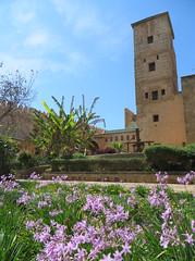 Rabat kasbah des Oudaya_0539B (JespervdBerg) Tags: holiday spring 2016 africa northafrican tamazight amazigh arab arabic moroccanstyle moroccan morocco maroc marocain marokkaans marokko rabat qasbah kasbah qasba oudayas oudaias