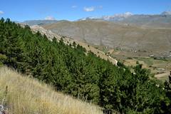 Rocca Calascio - Abruzzo, provincia de L'Aquila - 1.460 metri s.l.m. (boscam) Tags: italia abruzzo laquila rocca panorama montagna appennino flora vegetazione