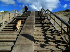 stairway (JosDay) Tags: stairway trappen naarbeneden naarboven goingup goingdown strand beach duinen dunes thenetherlands holland thehague denhaag dedokaaugustus walkingthedog