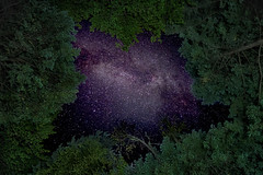 The Star Gate (daveaingram) Tags: camping family frame milkyway mtcardigan newhampshire stars trees