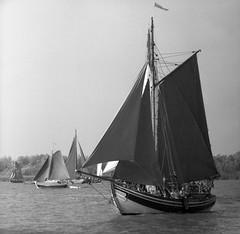 Glckstadt: Rhin Regatta (Etzadle) Tags: deutschland schleswigholstein elbe glckstadt regatta kiev88 ilford caffenol bw analog