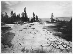 West Thumb Paint Pots (YellowstoneNPS) Tags: yellowstonenationalpark gardiner mt usa