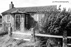 That old bungalow again. (MAMF photography.) Tags: aldbrough blackandwhite blackwhite britain bw biancoenero blancoynegro blanco bungalow coast england enblancoynegro eastyorkshire eastcoast flickrcom flickr google googleimages gb greatbritain hull hu11 house inbiancoenero image mamfphotography mamf monochrome nikon noiretblanc noir negro north nikond7100 northernengland onthestreet oldhouses photography pretoebranco road sex schwarzundweis schwarz street uk unitedkingdom upnorth village yorkshire zwartenwit zwartwit zwart seasideroadaldbrough seasideroad