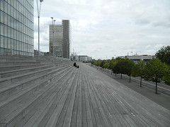 National Library of France - Dominique Perrault (Andrei Pripasu) Tags: bibliothèque nationale de france national library dominique perrault pine forest landscape roof deck paris architecture building stairs monumental monumentality teak wood