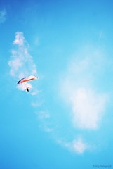 (fanny.czk) Tags: paragliding sky mountains alps frenchalps coupeicare acro paragliders love nature sport